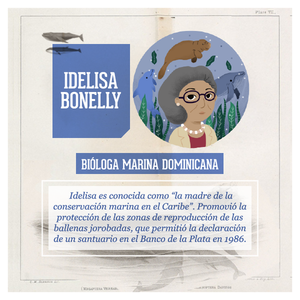 Idelisa-Bonelly-300x300@2x.png